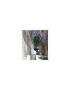 Pot Pourri de Provence